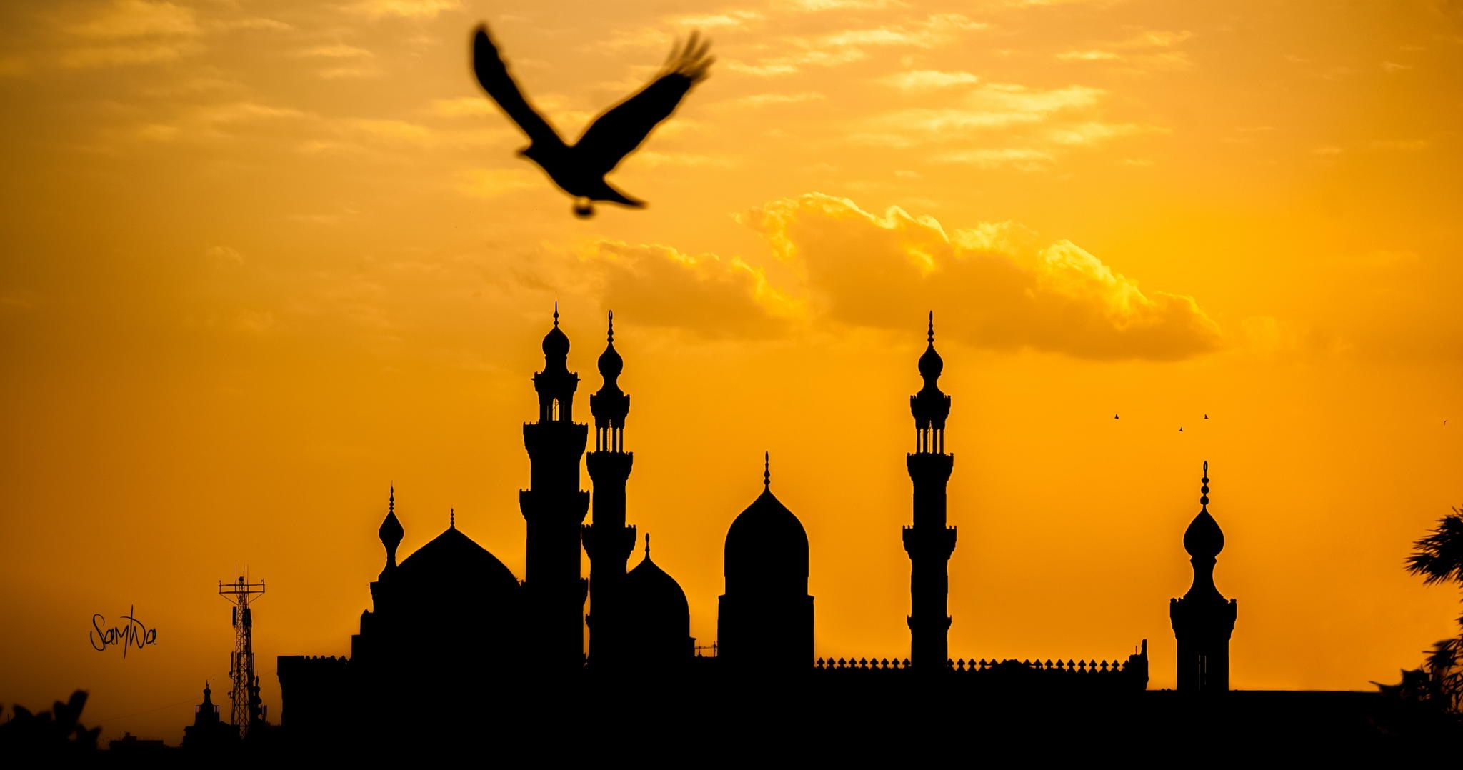 A view of Old Cairo's mosques from Al-Azhar Park. Sherif Mourad.